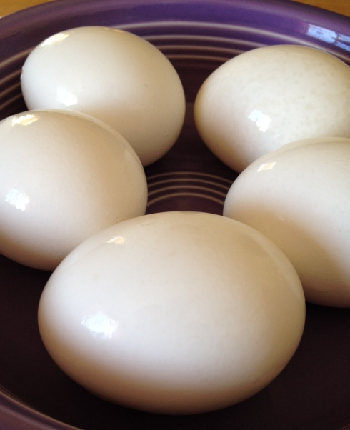 Spring Egg Traditions - including perfect hard boiled eggs   via MyOtherMoreExcitingSelf.wordpress.com