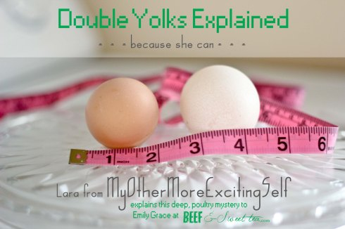 Double Yolks Explained | via MyOtherMoreExcitingSelf.wordpress.com