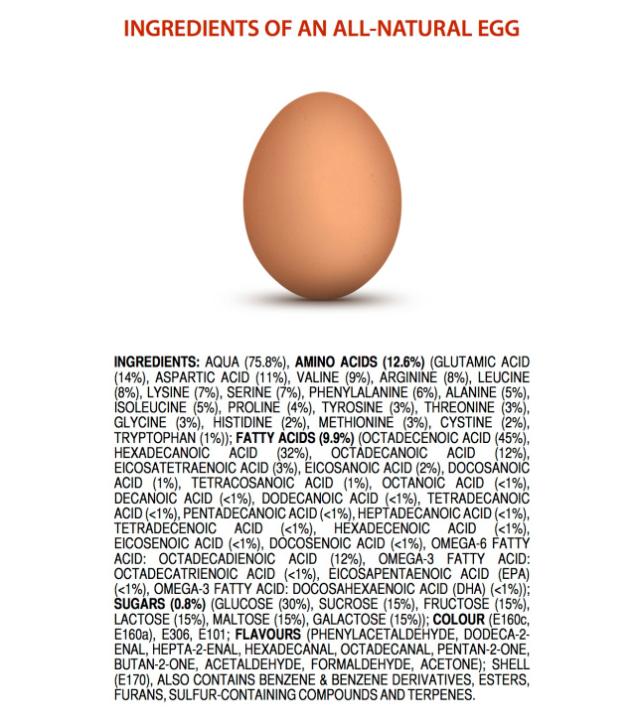 Indgredients in an egg   via MyOtherMoreExcitingSelf.wordpress.com