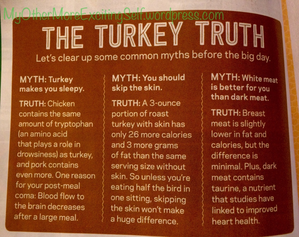 Turkey Truths from the Food Network   via MyOtherMoreExcitingSelf.wordpress.com